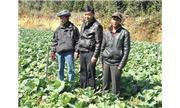 Đưa nông nghiệp công nghệ cao vào vùng sâu
