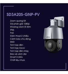 Camera SD3A205-GNP-PV