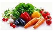 Nghiên cứu sản xuất Chitin và Chitosan Ogiome dùng trong sản xuất rau an toàn