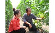 Thêm 2.370 tỷ đồng cho vay thí điểm nông nghiệp ứng dụng công nghệ cao