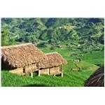 Ethnic Houses