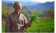 Nhà nông tài ba ở Incheon và thu nhập hàng