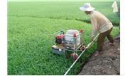 Nông dân sáng chế máy phun thuốc sâu điều khiển từ xa